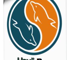 Havij PRO Crack 1.17 License Key Free Download 2022